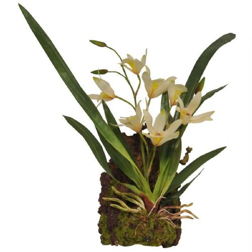 LR Hanging Orchid White, IF-16